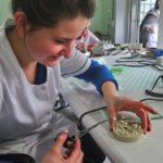 Technicy dentystyczni na zajęciach modelarstwa